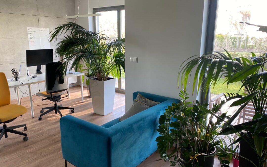 UL.HALLERA,WROCŁAW,POW.64,5m2,komfortowe biuro z tarasem i ogrodem,klimatyzacja,  ,CENA:4000 ZŁ netto, NR  OFERTY SG-10-2021